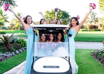 tn_sari golf cart